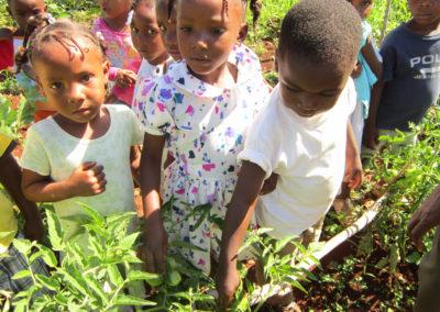 La Montagne de Jacmel - Jardin-scolaire